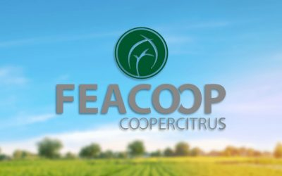 FEACOOP
